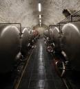 Pivovar Cvikov ležácké sklepy